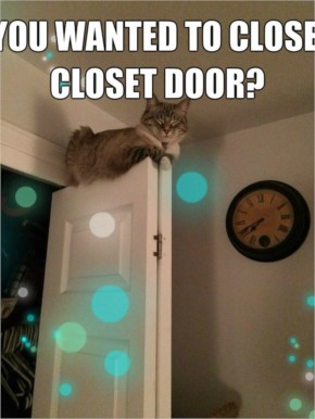 Oh, you wanted to close the closet door?