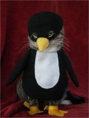 10. Penguin Cat