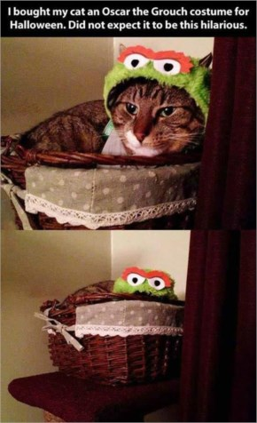 11. Oscar the Grouch