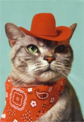 27. Sheriff Whiskers