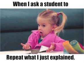 Asking a student to explain what i just said
