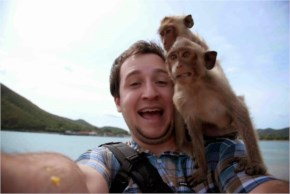 Funny animals taking selfies with humans