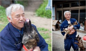 He also freed many animals that had been left chained up by their owners