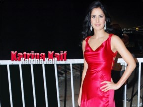 hot ieee katrina kaif with red dress at a private function