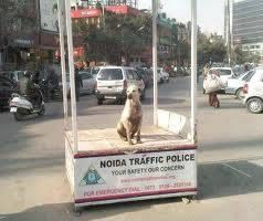 No Trafic Police please. We can even manage trafic