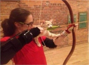 This cat who thinks she can help shoot an arrow