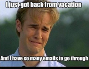 10 Funny Pictures after long holiday going back to work