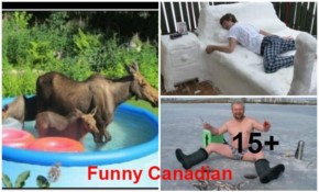 15+ Funny Canadian Pictures of the Day