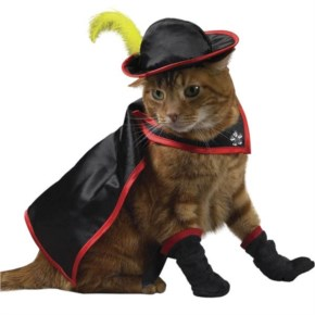 15 Hilarious Cats In Costumes – 6 Muskakitty