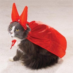 15 Hilarious Cats In Costumes – 7 The Evil One Cat Costume