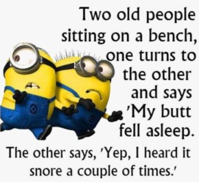 2 out of 10 Funny Images of Minion Quotes I