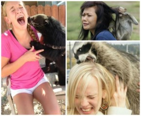 25 Woman Vs Animals Pictures