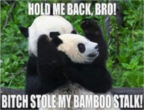 A Funny Picture Of Meme Hold Me Back Bro