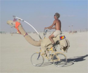 Amazing… Funny  Man Plan Only Can  Run In Desert Funny Camel Cycle!