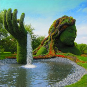 Amazing Fountain Topiary