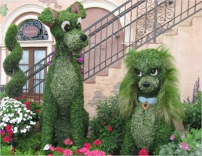 Amazing Picture....Cute Dogs Made With Grass In A Garden