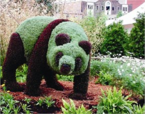 Atlanta Botanical Panda Graciusete Mosaicultures Internationales Denontreal