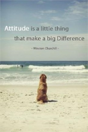 Attitude, Makes, Difference