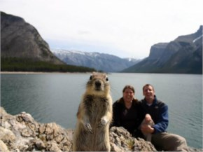 Best Photobomb Squirrel Happy snaps the squirrel saw