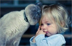 Cat Gives Kid Great Compassion