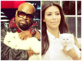 Cee lo green cat feeling happy with their cute cats