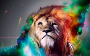 Creative Beautiful Lion Photos