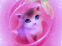 Cute Cat image -like pink doll and blue eyes