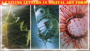 Digital Art Present the Living Letters