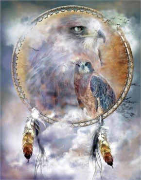 Dream Catcher Art - Hawk Spirit