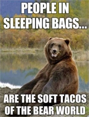 Dump A Day Champing Funny Pictures Of The Day… Bears Love Soft Tacos