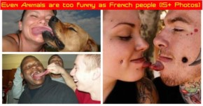 Even Animals are too funny as French people (15+ Photos)
