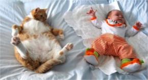 Funny  Adorable Cat and Baby Sleeping Together