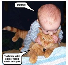Funny Baby And Ailing Cat