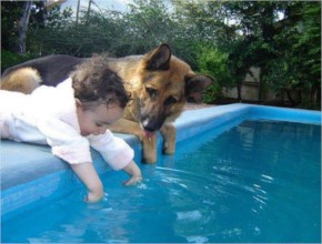 Funny Baby and Dog are Playing Together