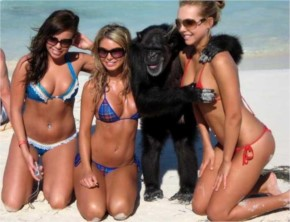 40+ Funny situation faced by some strange People on beach