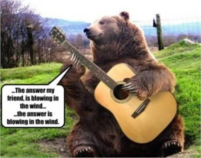 Funny Bear Playing Guitar