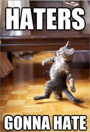 Funny Cat Haters Gonna Hate
