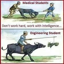 Funny Image Students  In Firm