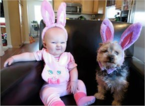 Funny image with cute baby and dog