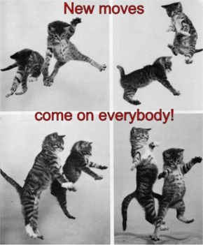 Funny Kittens Dancing And Flying On Series Of Pictures