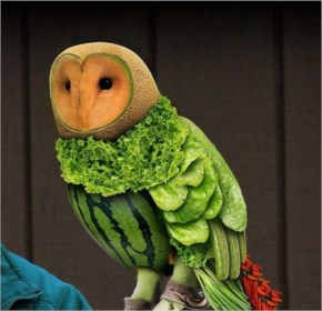 Funny Owl created from fruits and vegetables