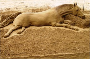 Funny Pictue Gallery - Beautiful Sand Art Horse