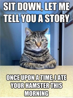 Funny Pictures Sit Down, Let Me Tell You A Cat Story Meme