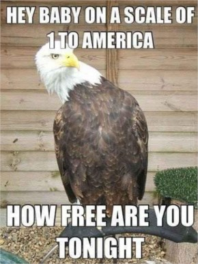 Hey baby on a scale of 1 to America....funny picture