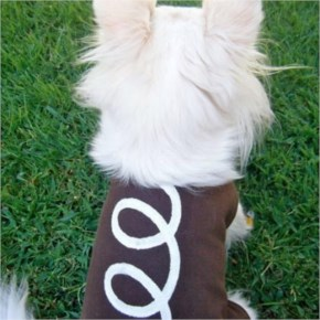 Hilarious Homemade Halloween Costumes for your Dog-2 Hostess Cupcake Dog Costume