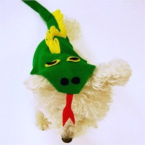 Hilarious Homemade Halloween Costumes For Your Dog-9 Fire Breathing Dragon Dog