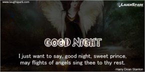 I just want to say Good Night - Good Night Sms