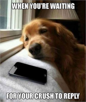 I Totally Agree...Waiting For Bae To Text Back Like Pic