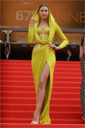 Irina Shayk Wearing Atelier Versace Dress – 'The Search' Premiere – 2014 Cannes Film Festival