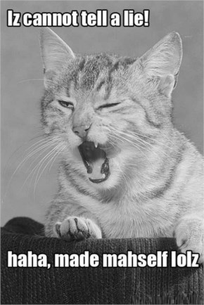 Iz Cannot Tell A Lie-Cats Captions